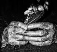 aspettando-la-vecchiaia-baraldi
