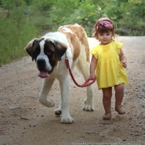 cute-little-girl-walking-with-her-best-friend
