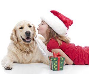 regali-per-cani